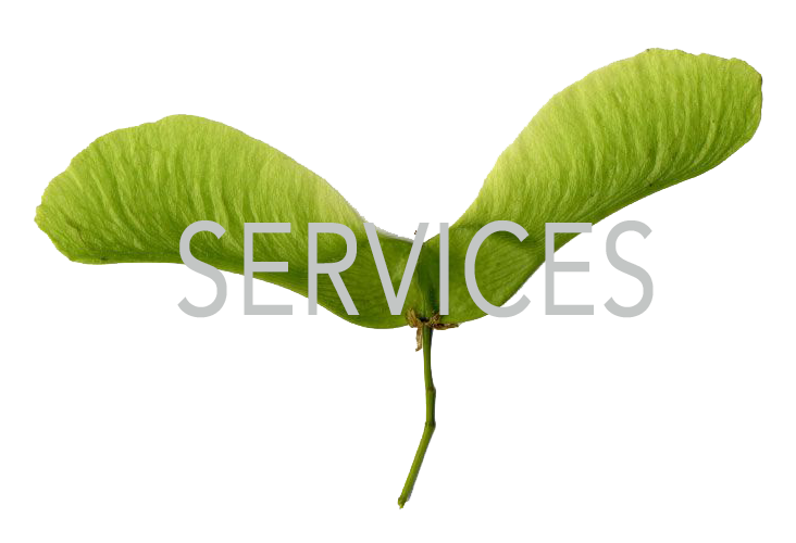 Green Propeller - Services